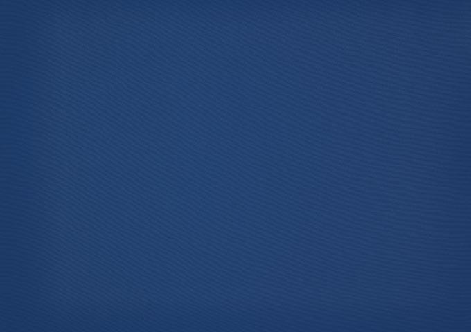 Toile store Dickson Orchestra - 8202 - Bleu foncé
